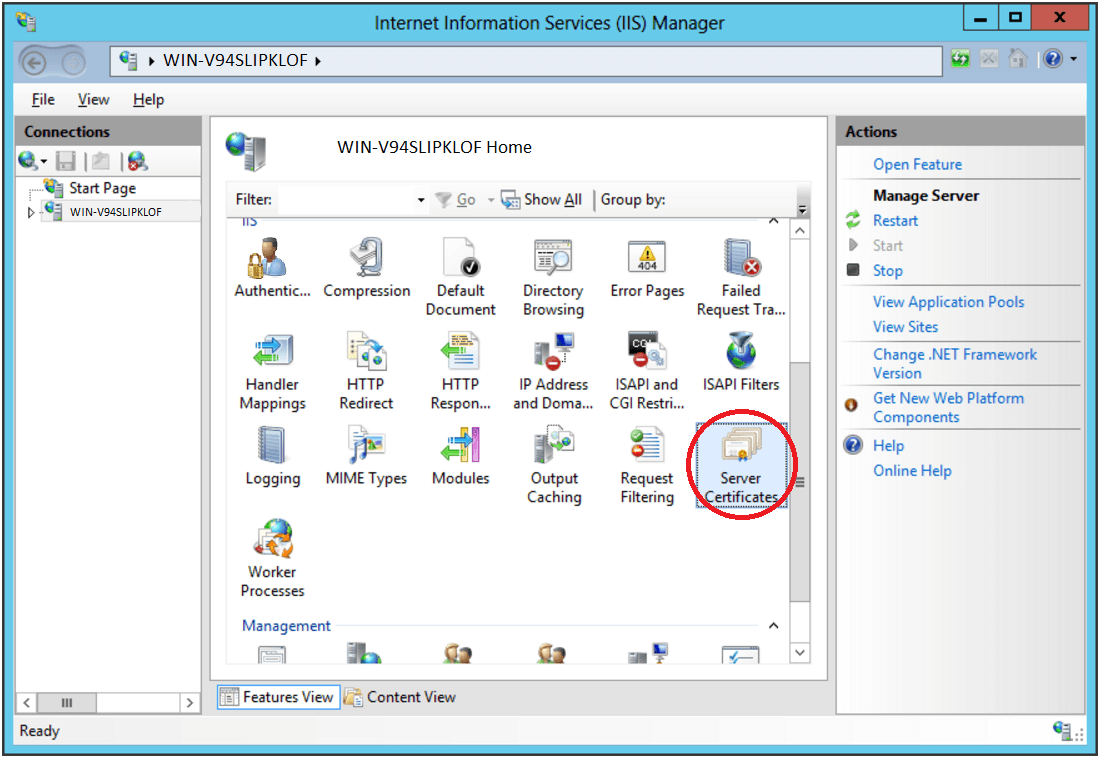 IIS Manager Server Certificates